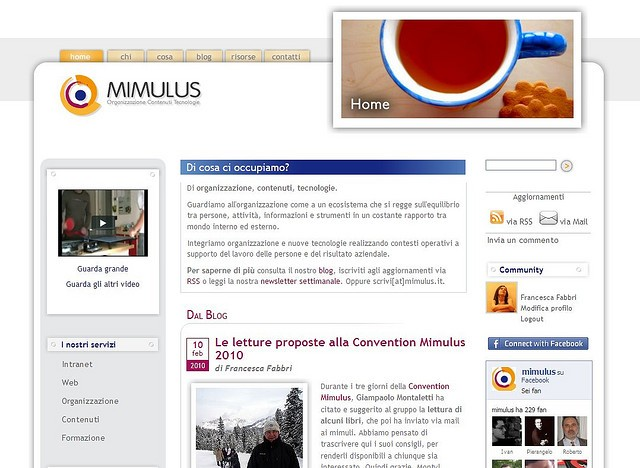13 febbraio 2010: buon compleanno, Mimulus online!