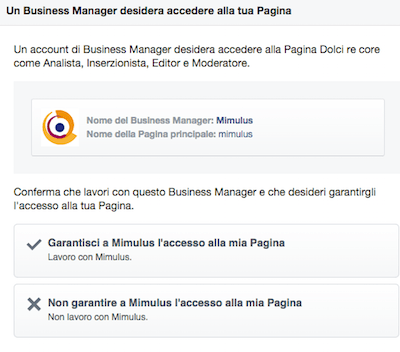 Facebook Business Autorizza 2 - Mimulus