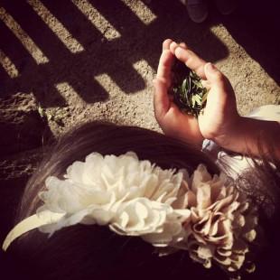 Instagram per Mulino Bianco